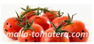 tomates sonriendo