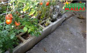 malla para tomates en huerto